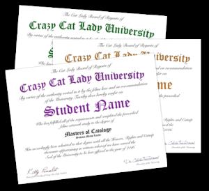 CCLU-diplomas