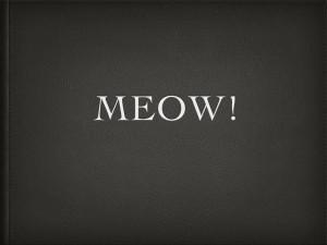Meow.001